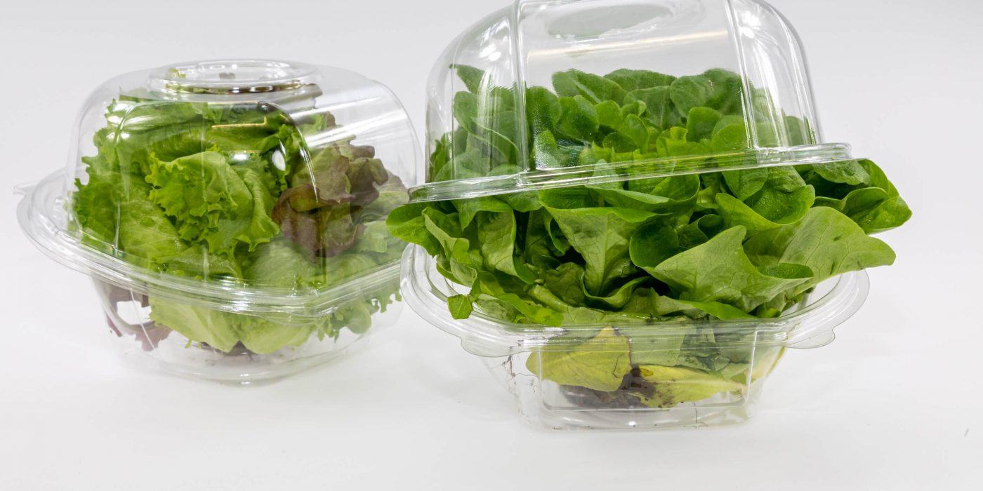 Salad Packaging Container